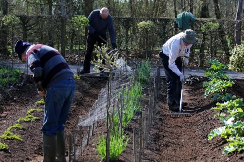 Gardening at Hanbury Hall